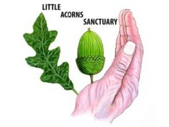 Little Acorns Sanctuary